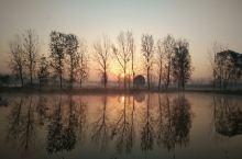 我见朝阳多抚媚,料朝阳,见我应如是。