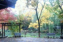 里面是亭榭错落,回廊曲折,白鹅游湖,林木郁郁葱葱,古色古香。