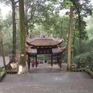 伏虎寺旅游景点攻略图