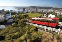 《锋味》之新西兰11天美食美酒之旅