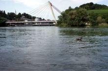 带着父母去旅行,维京游轮行驶在莱茵河上的家~