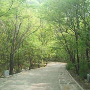 八仙山自然保护区旅游景点攻略图