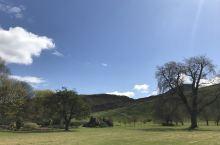 Holyrood palace外面的草坪