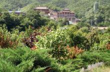 寻找少林寺