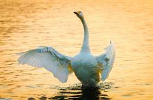 荣成:过悠闲的渔民生活,感人与自然和谐相处