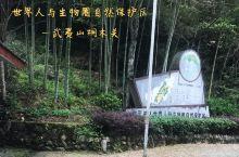 世界人与生物圈自然保护区~武夷山桐木关
