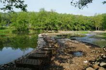 川西竹海峡谷--金鸡谷