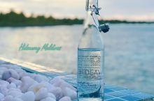 小馄饨的马尔代夫神仙珊瑚之旅