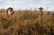 缅甸乡村徒步带你看最真实缅甸