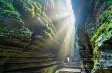 深入恩施海底迷宫,探秘世界最古老石林