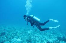 在红海里与大海亲密接触!