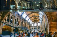 跟着电影去旅行 | 《帕丁顿熊》取景地 伦敦自然历史博物馆