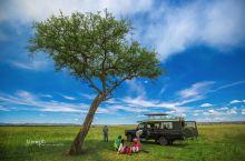 动物天堂肯尼亚之旅需要注意什么