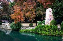 中山公园—繁华闹市区里的宁静