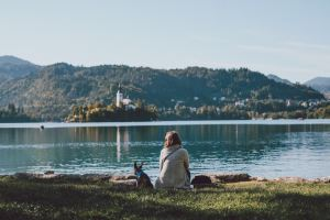 Bled,Recommendations