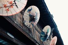 来乌镇,体验小桥流水的江南风情