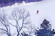 元旦好去处!中国著名滑雪场,百年古镇…连诸葛亮都选在这里隐居!