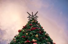 基督城圣诞节的正确打开方式#在当地过节#