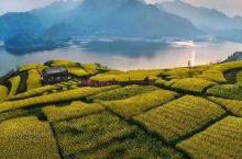 《知否知否应是绿肥红瘦》取景地曝光!这座低调了千年的江南古城终于藏不住了!