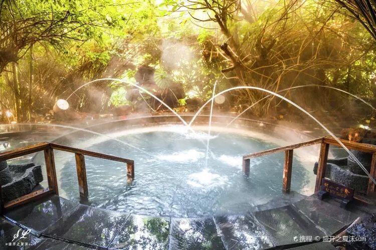 荷花溫泉3