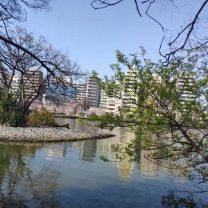 毛马樱之宫公园旅游景点攻略图