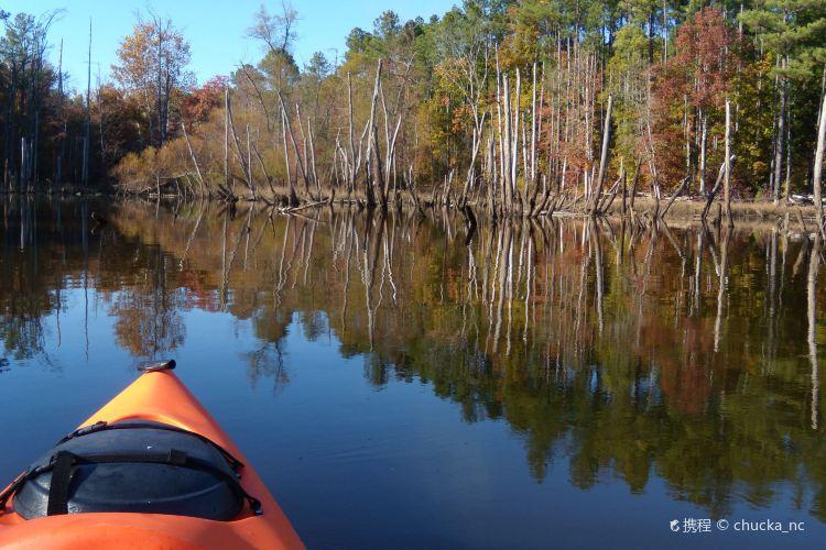 Beaver Lake1