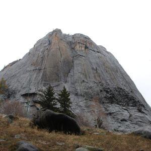 瀑布化石旅游景点攻略图