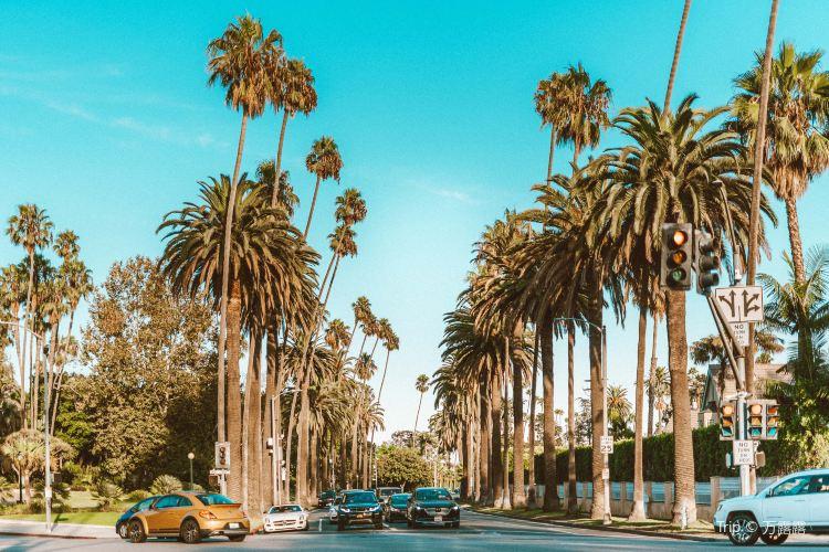 Sunset Boulevard1