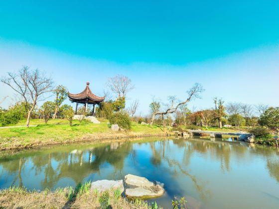 鵝湖玫瑰文化園