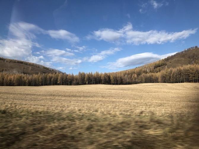 呼伦贝尔大草原 一万个人眼中有一万种呼伦贝尔大草原的秋 – 呼伦贝尔游记攻略插图43