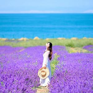 青海湖游记图文-【青海湖包车攻略】大西北丨夏天最美的青海甘肃大环线,一次看尽万般风景