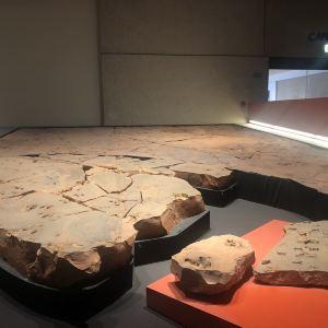 布里斯班博物馆旅游景点攻略图