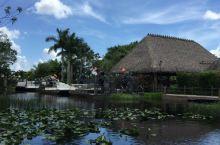 迈阿密一一南海滩、小哈瓦纳,珊瑚阁、大沼泽国家公园