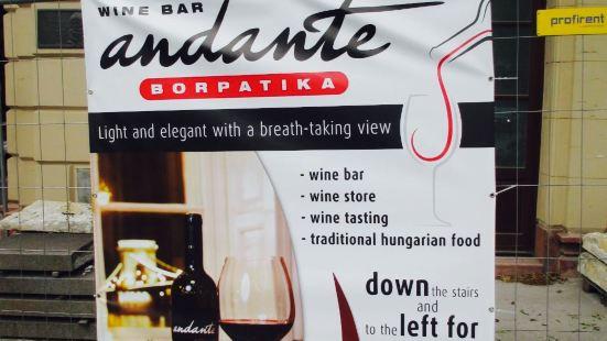 Andante Wine Pharmacy