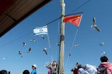 云游四海(740)传奇以色列(5)船游加利利湖