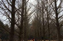 韩剧《冬季恋歌》的拍摄地