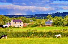 (二)英国的小乡村、草地上零星散落的牛羊,质朴的小屋,河边的溪水、还有可爱的松鼠,会蹦跳着向你乞食…