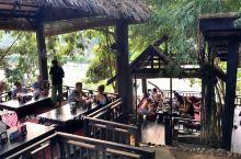 竹林中的餐厅