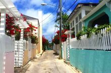 哈勃岛,除了粉色沙滩,还有一幢幢美得不像话的小屋