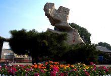 沧州传统文化两日游