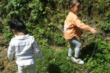 小朋友们在德夯大峡谷玩的好开心啊