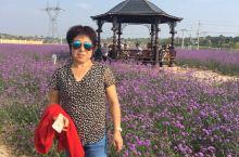 庆城北欧风情园