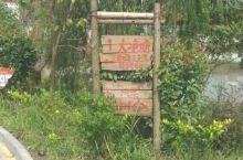 红色文化:新四军三支队司令部旧址和毛主席像章陈列馆