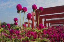信阳百花园