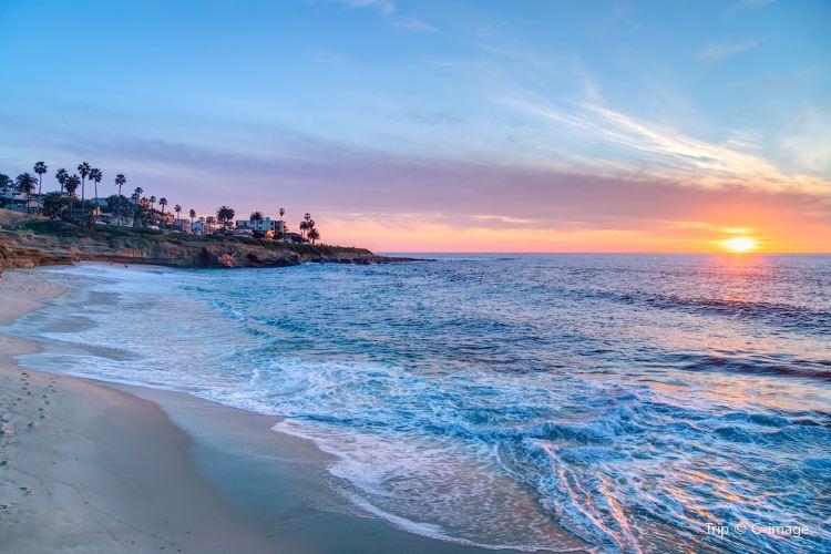 La Jolla Shores1