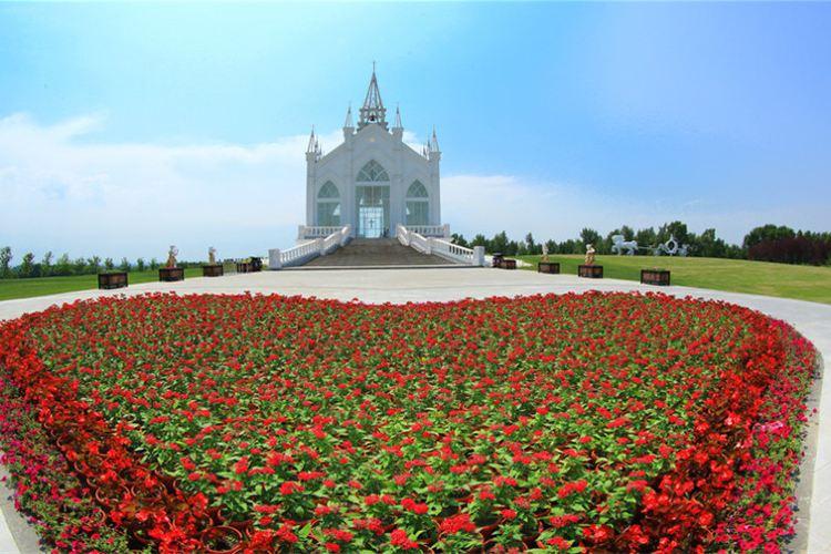 Provence Lavender Manor of Harbin4
