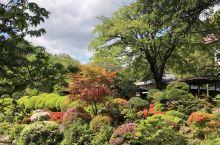 日本初体验——吉池旅馆泡汤,远观富士山
