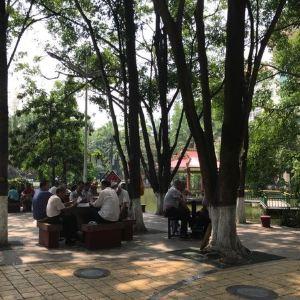 孔雀湖旅游景点攻略图