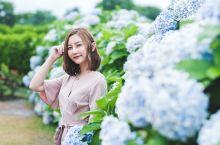 韩国|夏日游济州岛的正确方式