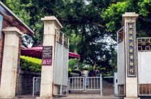 鼓浪屿风琴博物馆,这座小岛的另一种打开方式